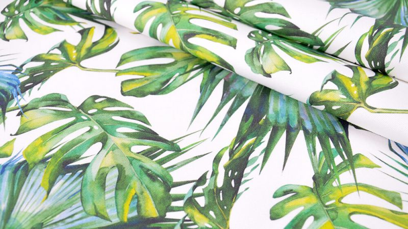 Monstera leaves – the most fashionable flower in years