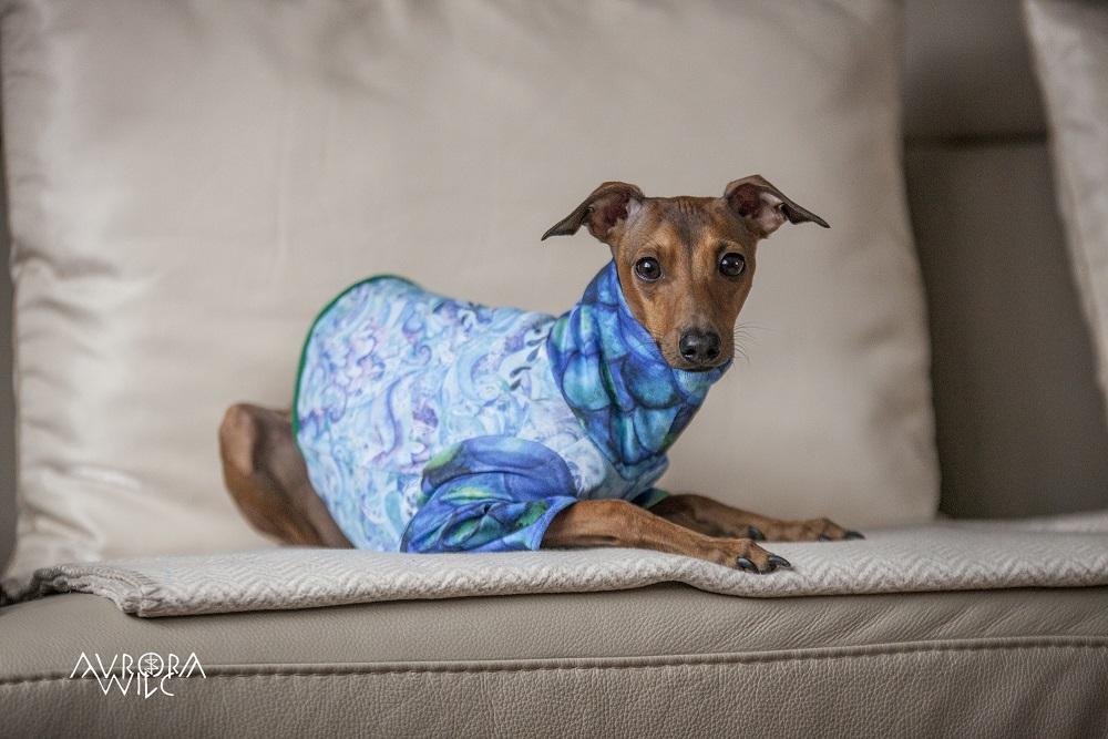 ubranka dla psów szyte na zamówienie