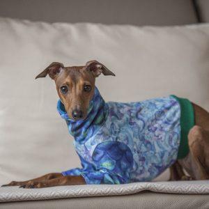 Jak pasja zmieniła się w pracę – ubranka dla psów szyte na zamówienie