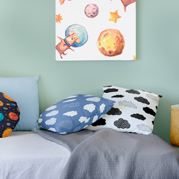 pillows printed with boysbedding pattern